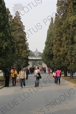 Path near the North Gate of the Temple of Heaven (Tiantan) in Beijing