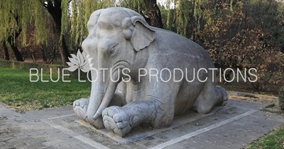 Elephant Statue on the side of the Sacred/Spirit Way (Shen Dao) at the Ming Tombs (Ming Shisan Ling) near Beijing