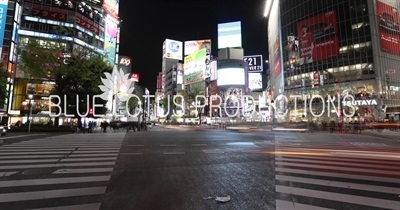 Time-Lapse of Shibuya Pedestrian Crossing at Night in Tokyo