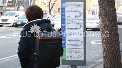 Passenger Waiting for a Bus in Seoul