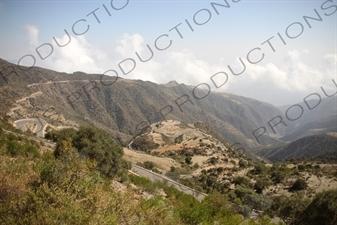Mountain Road Leading to Massawa