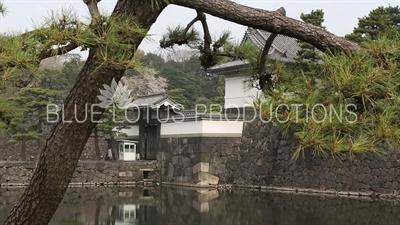 Tokyo Imperial Palace (Kokyu) Kikyo Gate (Kikyo Mon)