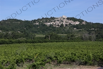 Château de Lacoste above Lacoste