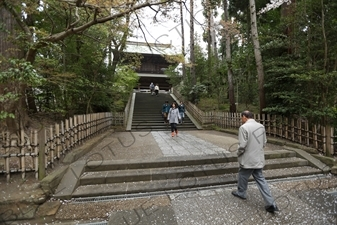 Stairs Leading to the Sanmon of Engaku-ji in Kamakura
