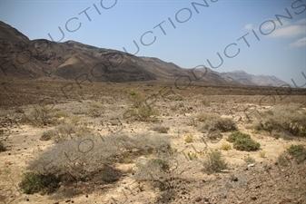 Hills and Scrubland around Lake Assal in Djibouti