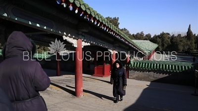 People Walking to the Hall of Prayer for Good Harvests (Qi Nian Dian) in the Temple of Heaven in Beijing