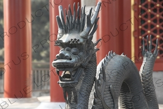 Bronze Dragon Statue outside the Hall of Benevolence and Longevity (Renshoudian) in the Summer Palace in Beijing